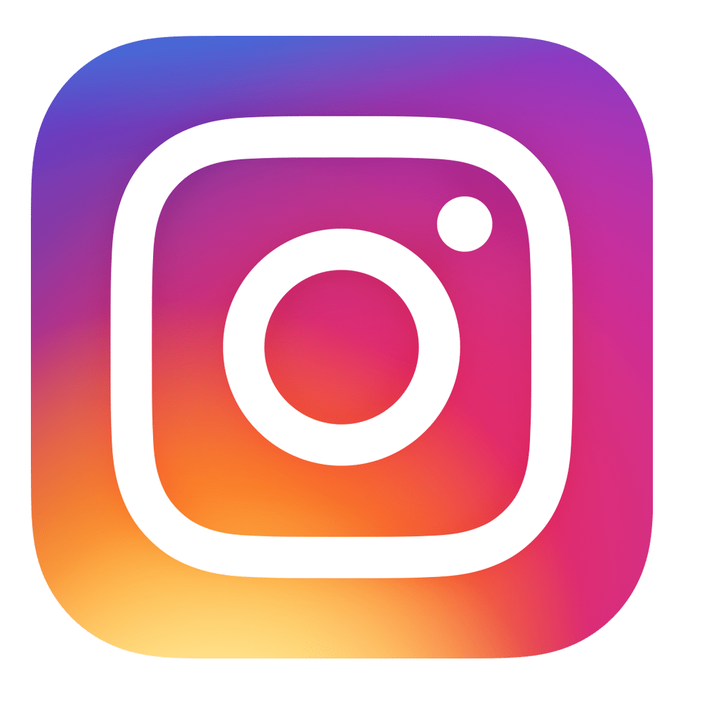 Image result for instagram icon transparent back